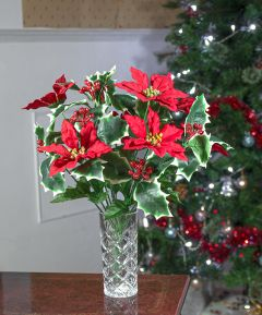 Poinsettia/Berry Bush