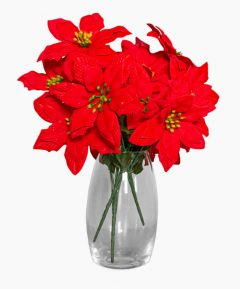 Red Poinsettia Flower Bunch