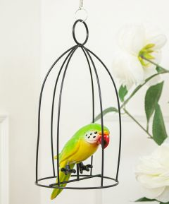 Hanging Parrot in Cage set of 2