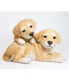 Cute Dogs Ornament
