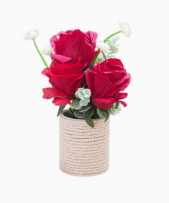 Flower display in Gift Bag - Red