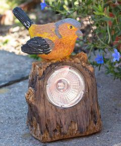 Bird Solar Light