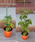 Extending Plant Stakes