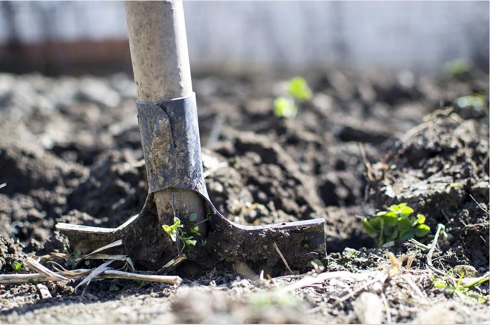 7 Essential Gardening Tools Blog.