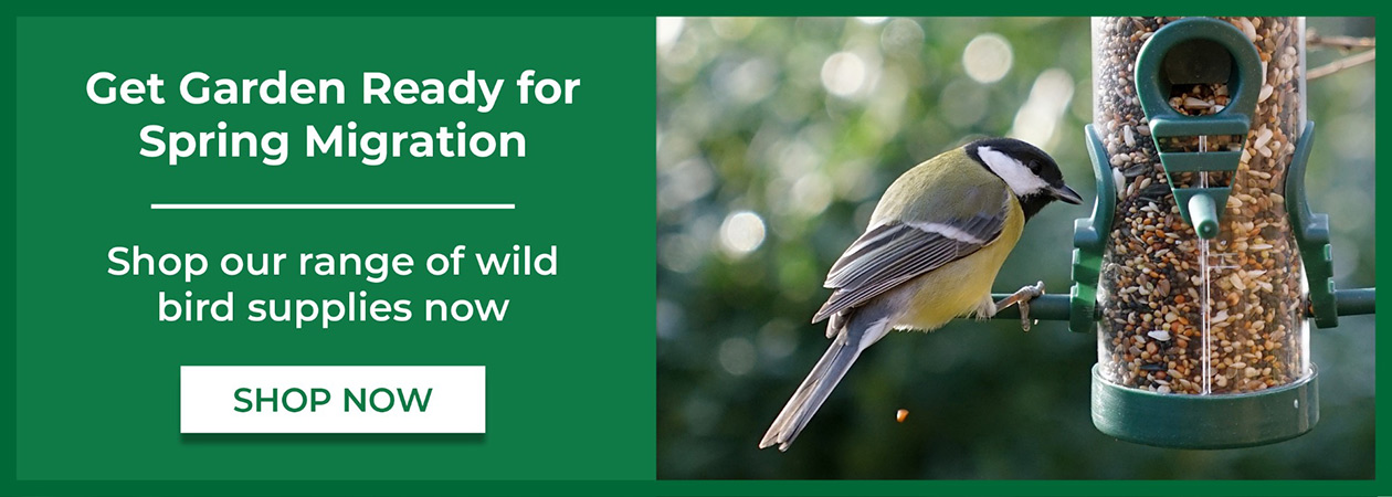Shop For Wild Bird Supplies